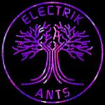 the band called Electrik Ants