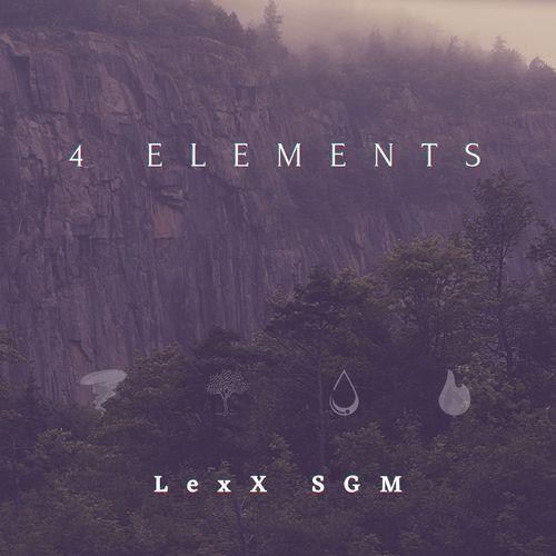 LexX SGM